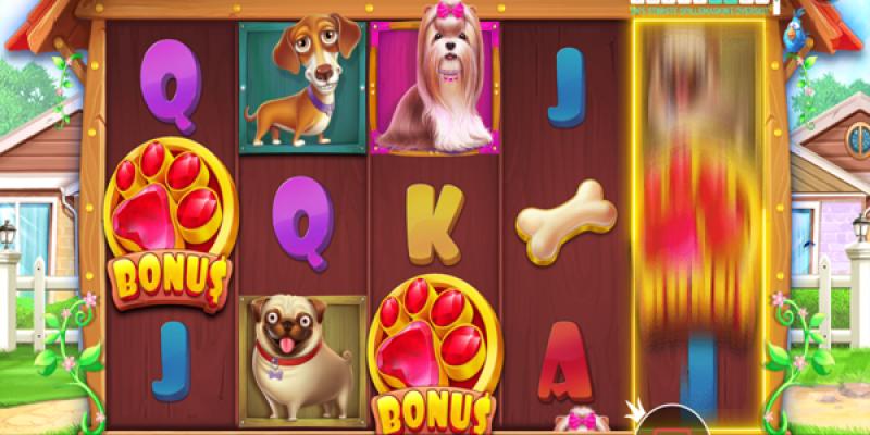 The dog house bonus hjul